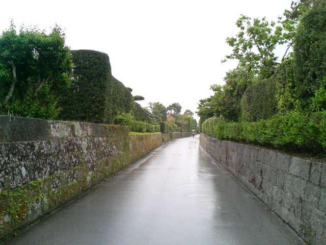 雨の鹿児島